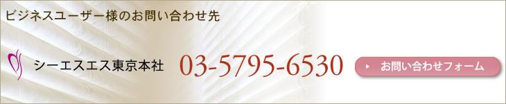 CSS製品の取り扱いに関するお問い合わせ先 シーエスエス東京本社